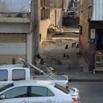 lop buri_monkeys_street