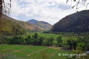 Mae Hong Son Loop Reisfelder Aussicht