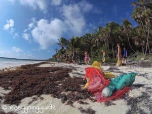 Strandsaeuberung