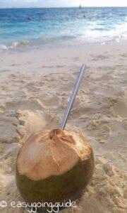 KokosnussStrohhalm