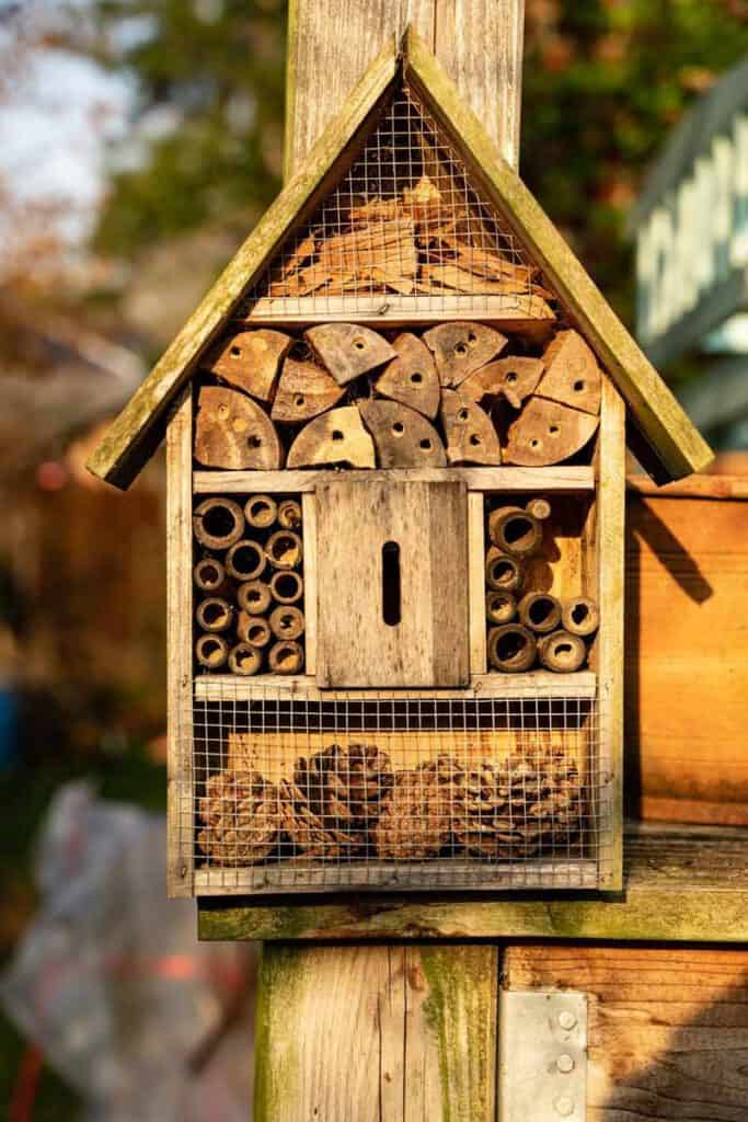 sustainable gifts: insect hotel